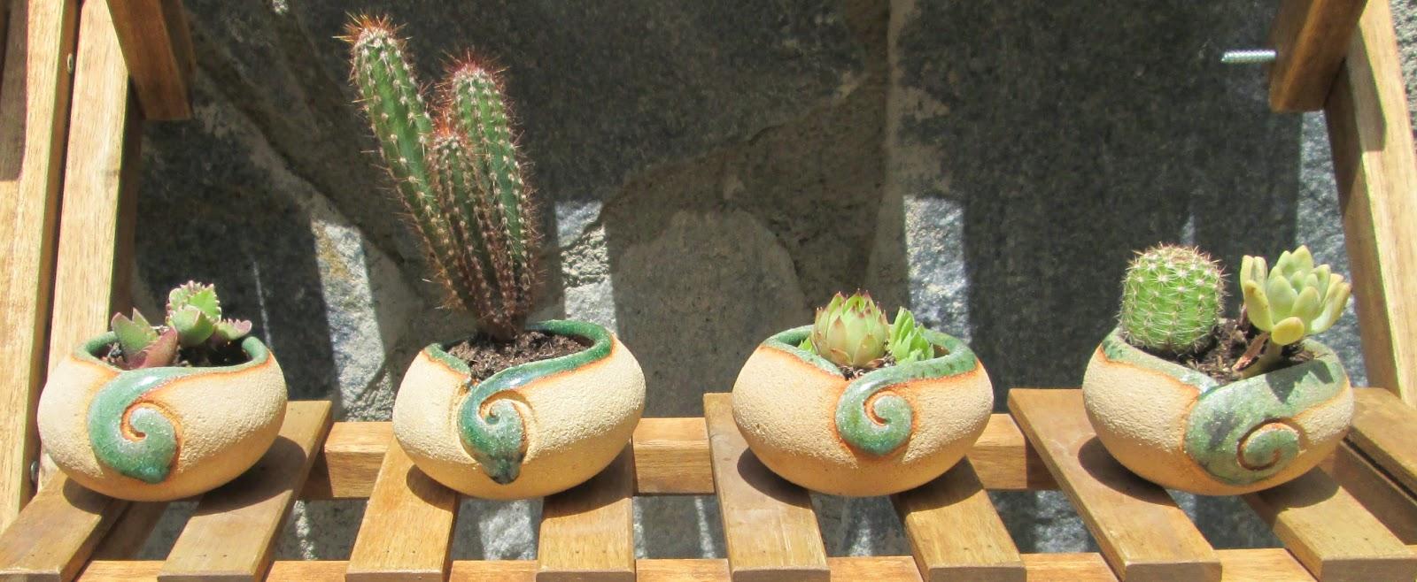 macetas para cactus, macetas para crasas, macetas para suculentas, decoracion jardin, decoración rustica, macetas para el jardin, tendencia en decoración plantas macetas