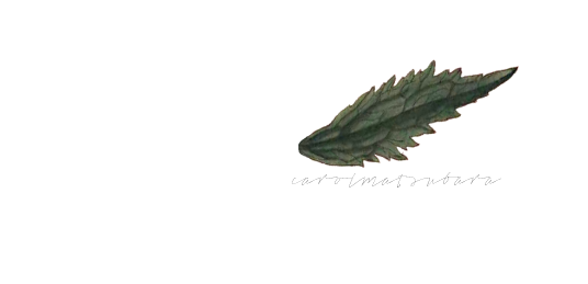 carolmatsubara