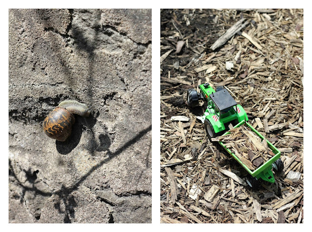 snails and tractors