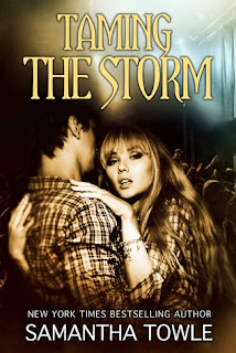 Taming the Storm (Epub)