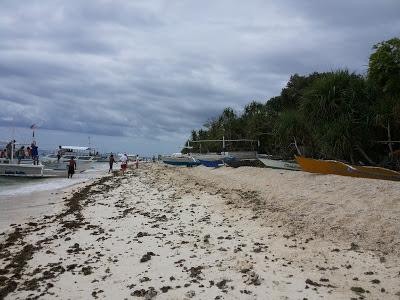 balicasag island shore