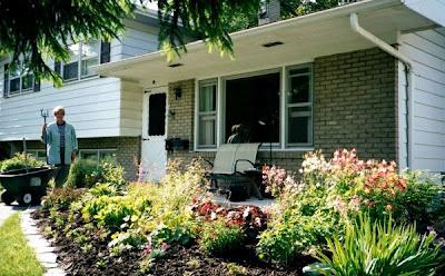 home design basic home gardening tips