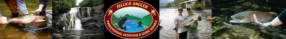 Tellico Angler