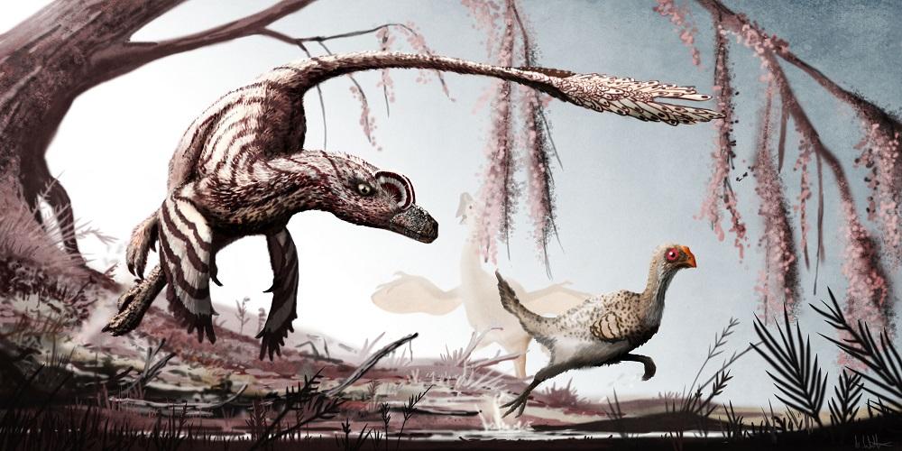 Mark Witton.com Blog: On Jurassic World and real 'raptors ...