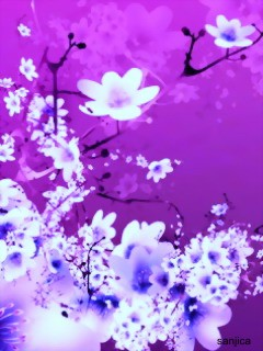 ... border wallpapers, purple flower abstract wallpaper, flower abstract