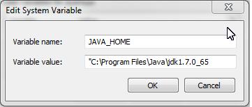 setting JAVA_HOME environmental variable