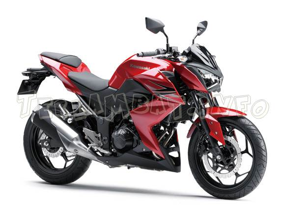 Kawasaki Z250 Candy Persimmon Red (Merah)