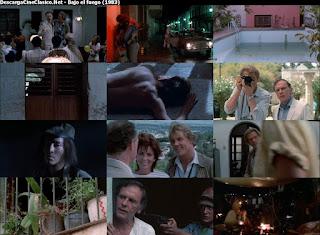 Bajo el fuego (1983 - Under Fire)