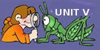 UNIT V