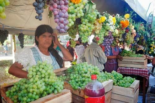 Fiesta en El Valle pone el broche final a la Vendimia Chapaca