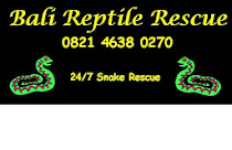 24/7 Snake Rescue