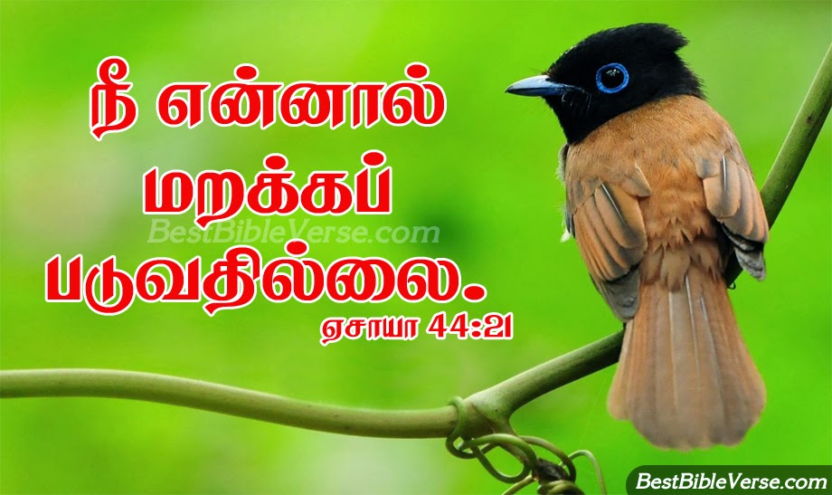 Jesus Pictures With Bible Verses In Tamil Nice inspiring tamil daily