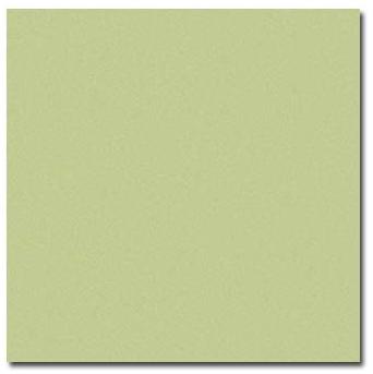 "12"" X 12"" Sweet Leaf Cardstock"
