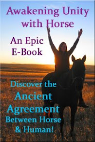 Take an Epic Ride with Horse!