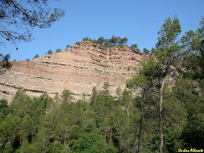 El front d'erosió de la riera Gavarresa a la Costa Grona. Autor: Carlos Albacete