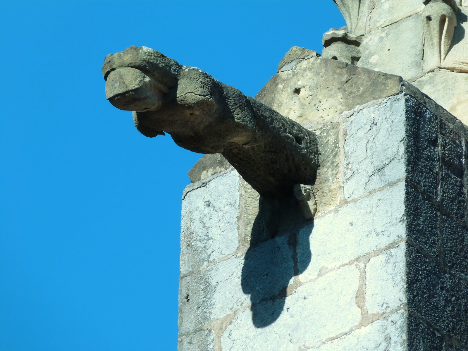 The Gargoyles