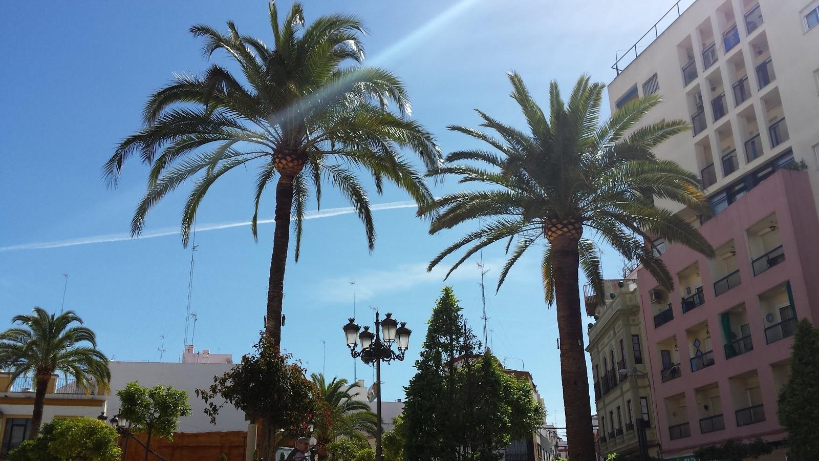 Reactivación de locales comerciales en Alcalá de Guadaíra