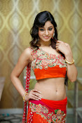 Shilpi Sharma Photos at Trisha Pre launch fashion Show-thumbnail-19