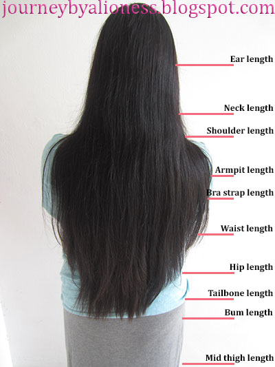 How To Measure Hair Growth Lioness S Journey