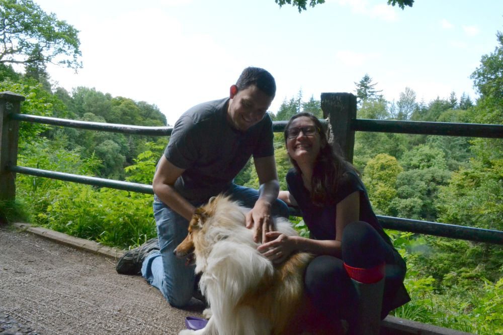 rough collie dog family portrait new lanark falls of clyde