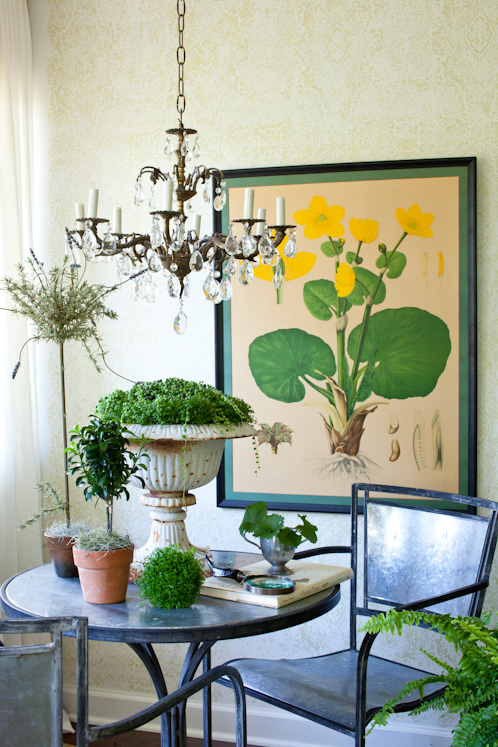 Pure style home finding large scale botanical prints - Decorative vegetable garden ideas stylish green ...