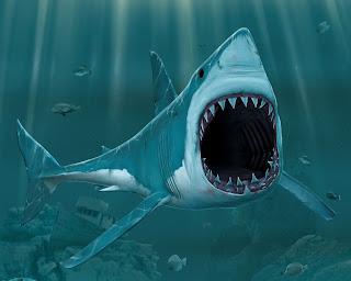 3D Shark Cartoon Open Mouth Sharp Teeth HD Desktop Wallpaper