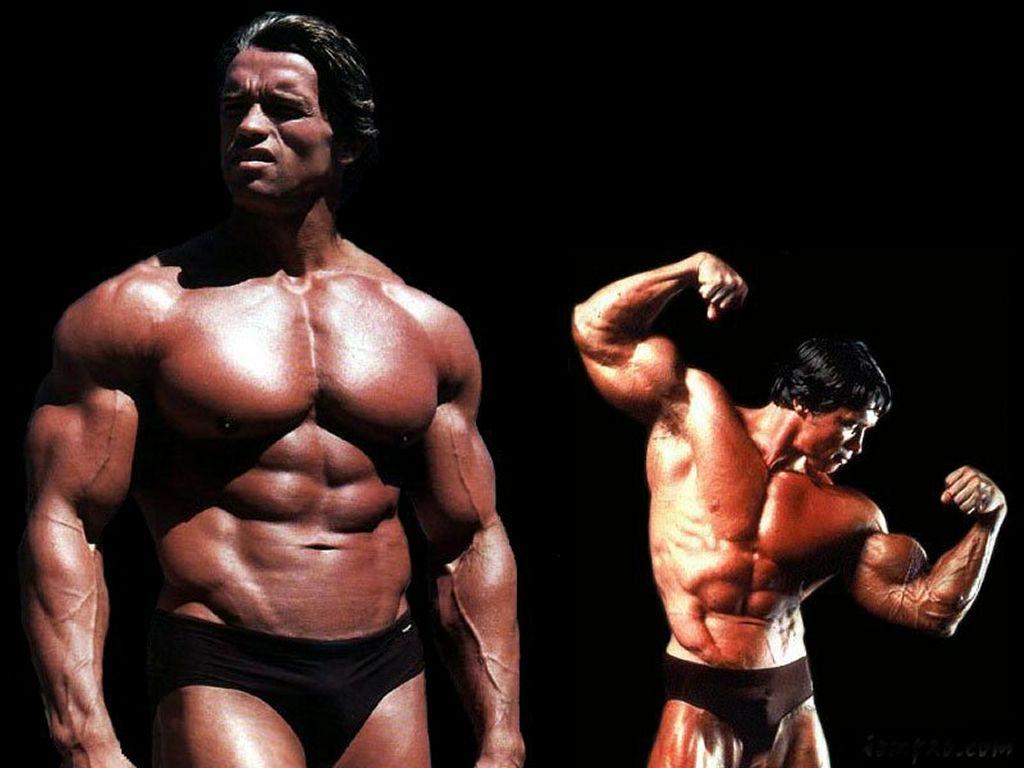 http://1.bp.blogspot.com/-3_WtIZlG6gA/ToMVy8VfB9I/AAAAAAAAAJg/-MpGEU0fDjo/s1600/Arnold+Schwarzenegger+%25285%25294.jpg