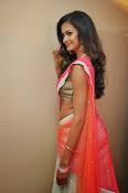 Shubra Aiyappa glamorous in half saree-thumbnail-9