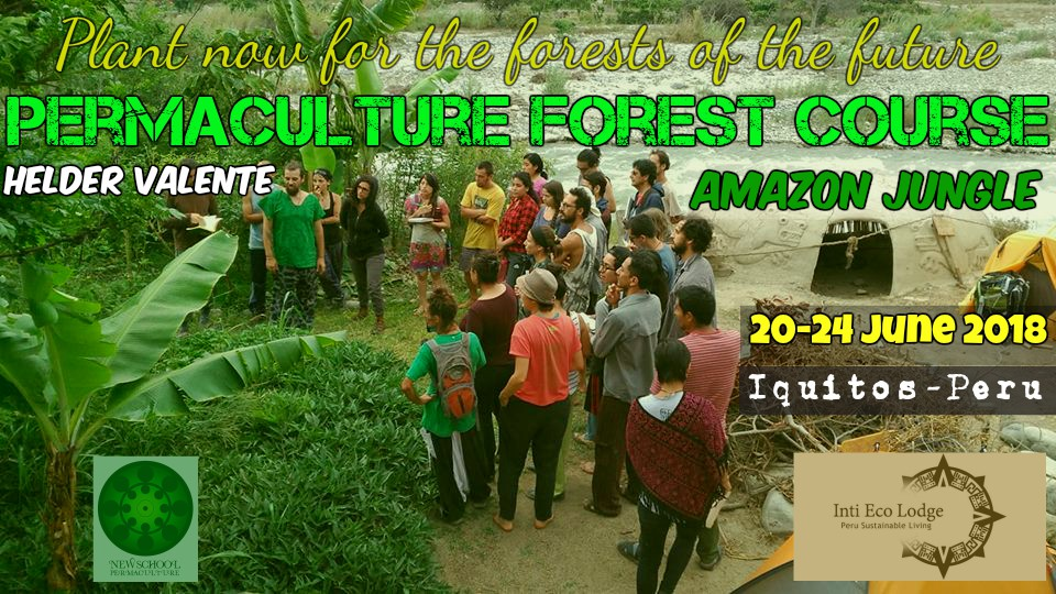 Permaculture Forest Course(PFC)