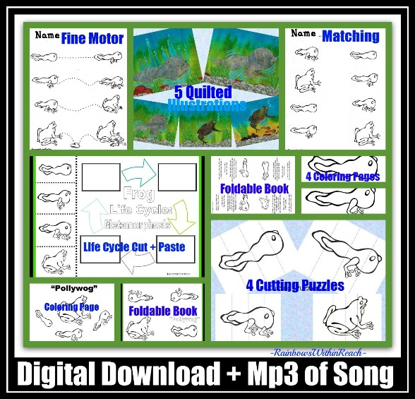 "photo of: Life Cycle of Frog, Metamorphosis, Support Materials for Science in Kindergarten, Preschool Science. Mp3 Support Materials for ""Pollywog"" by Debbie Clement"
