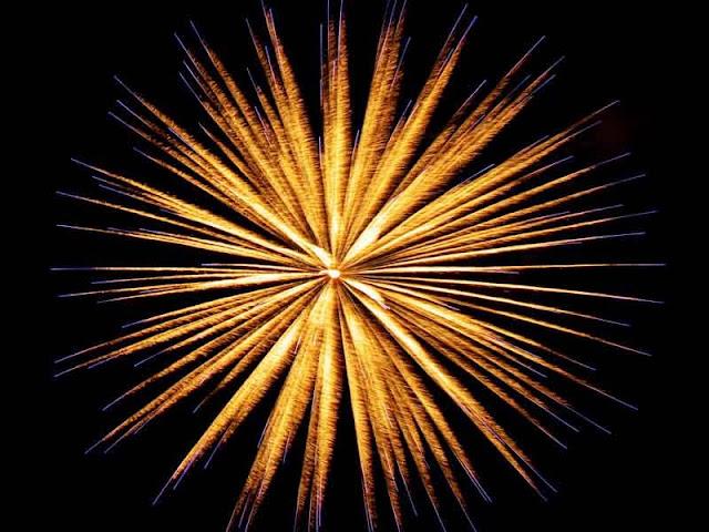 fireworks illuminate night sky