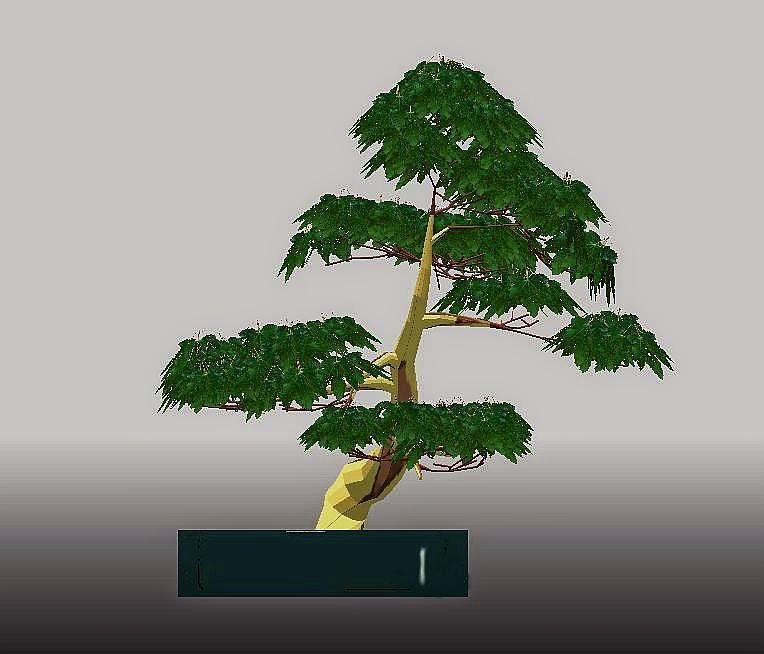 Modelo 3D bonsái
