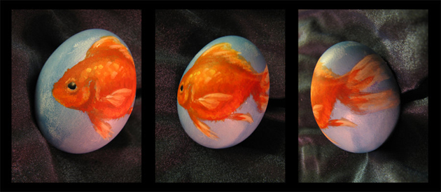 Awesome Egg Photography