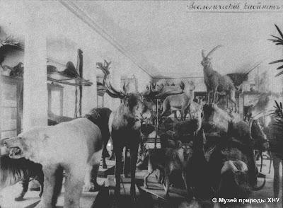Музей природы Харькова, 19 век