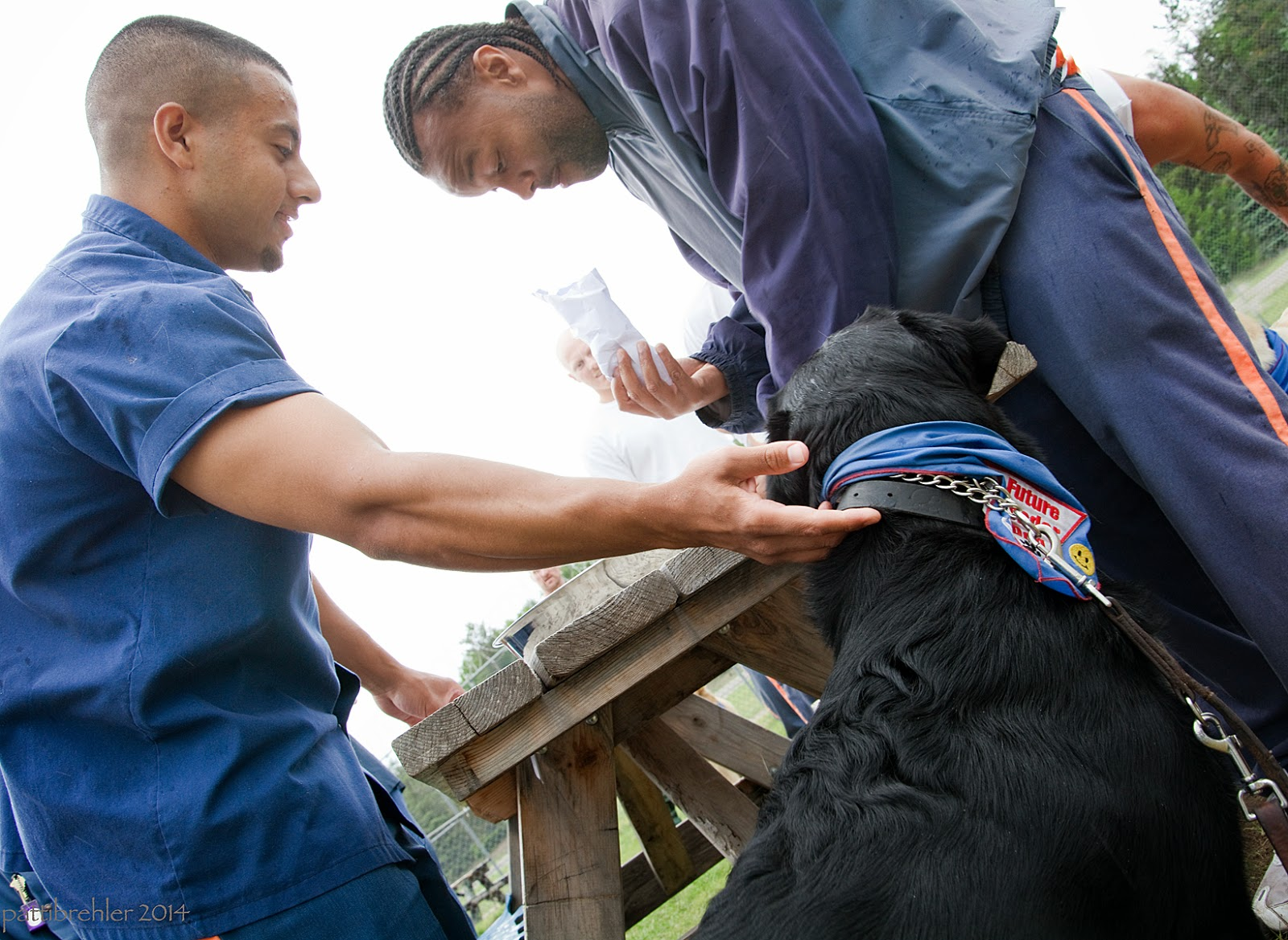 The photo is taken from a low position looking up at two men and a black lab around a wood picnic table. Both men are wearing the blue prison uniforms. The man on the left is reaching to the puppy's collar with his right hand. The man on the right is African American and is leaning ove rthe table with an envelop in his right hand.