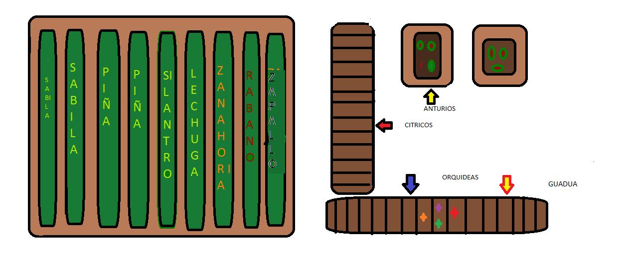 Plano del vivero forestal y ornamental plano vivero for Organizacion de un vivero
