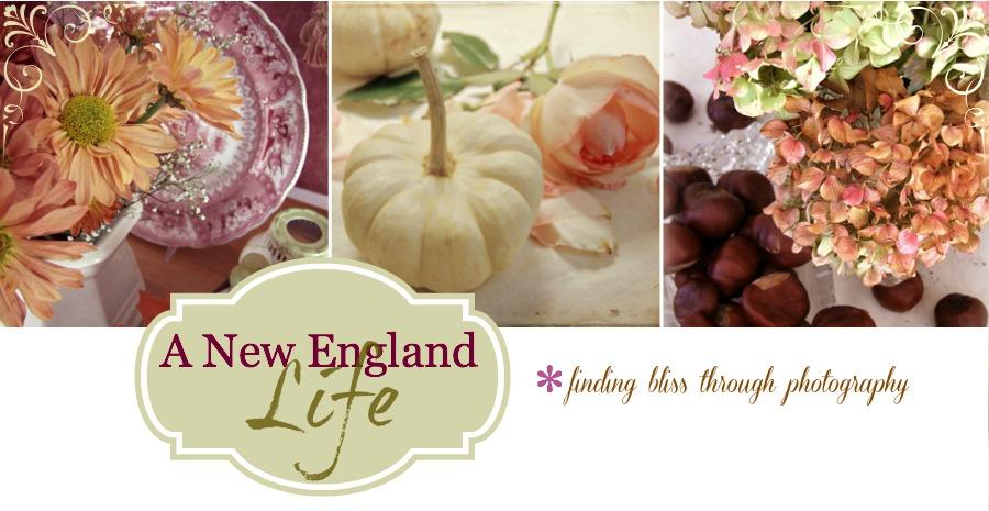A New England Life