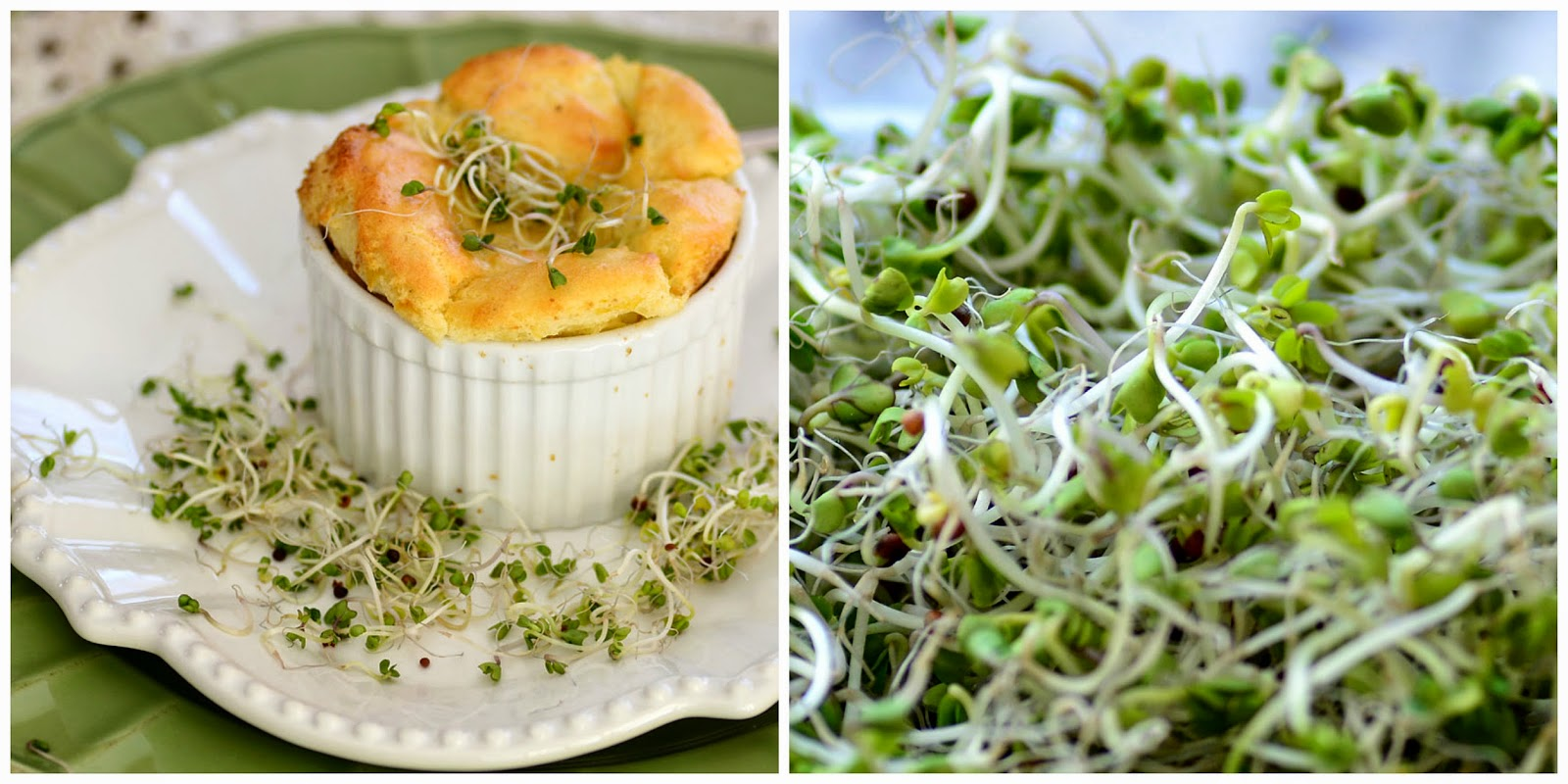 ... in the Kitchen: Irish Potato and Cabbage Soufflé with Smoked Cheddar