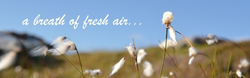 a breath of fresh air