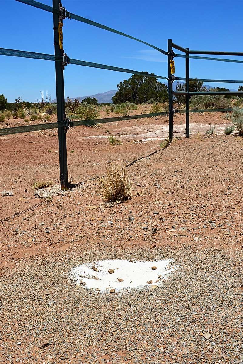 the 7msn ranch evidence based ant eradication