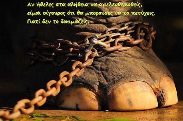 ο αλυσοδεμένος ελέφαντας-Χόρχε Μπουκάι-αληθινές ιστορίες ζωής-λόγια απλά