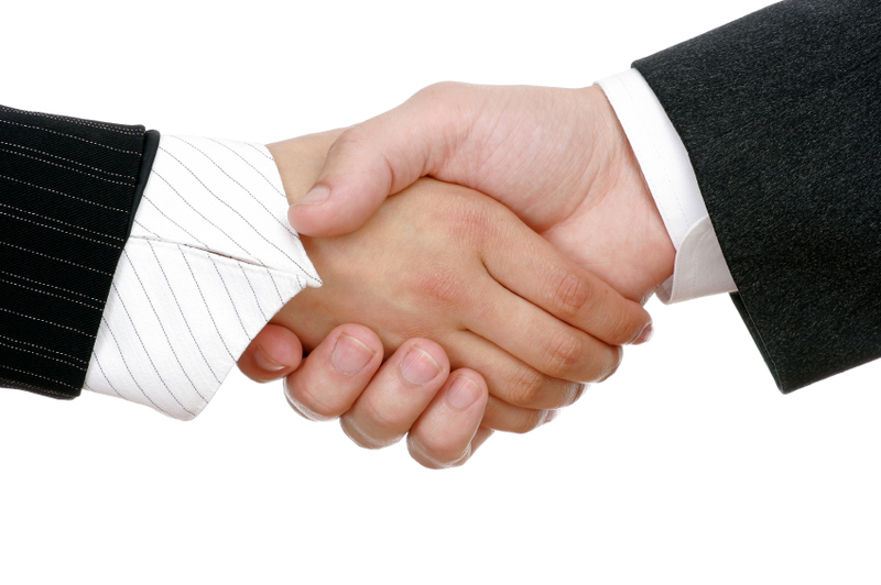 business people handshake. that some usiness people