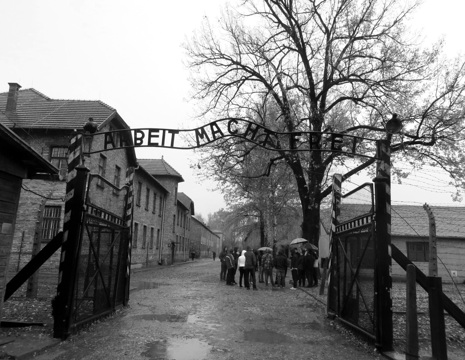 essay on concentration camps auschwitz