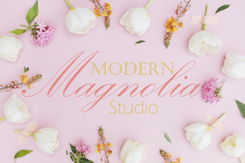 Modern Magnolia Studio