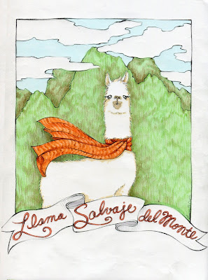savage-llama, llama, llama-drawing, llama-wearing-scarf, llama-scarf, peruvian-llama