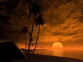 #6 Sunset Wallpaper