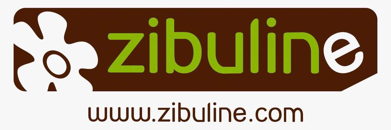 DT ZIBULINE juin 2014-Aout2015