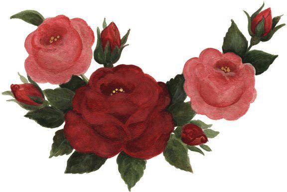 Imagenes de rosas rojas y rosas