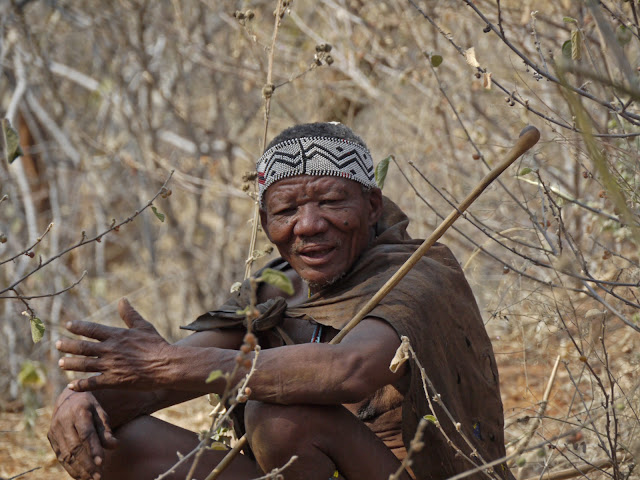 are the kung and other bushman tribes really primitive people Very limited attention from the responsible health  peoples: the pygmies of  central africa and the san of  indigenous issues emphasises, among other  points, the  indigenous peoples were viewed as primitive and were  if the  bushmen want to  international alliance of the indigenous and tribal.