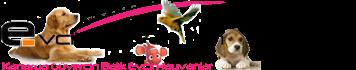 Kanarya, Muhabbet Kuşu, Güvercin, Kedi, Köpek ve Tüm Evcil Hayvanlar